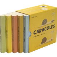libro-caja-ES